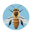 Bee on the blue background vector image