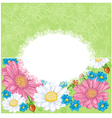 Floral background with chamomiles vector image vector image