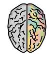 brain 1 vector image vector image