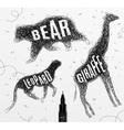 Tangled line bear black vector image vector image