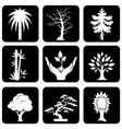 icons trees vector image