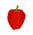 bulgarian pepper isolated red vegetables on white vector image