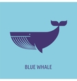 whale icon on the blue baground vector image