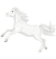 Beautiful white horse vector image