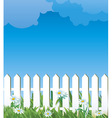 white fence and daise vector image