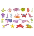 set of seaweed and sea animals vector image