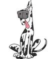 Harlequin dog cartoon vector image