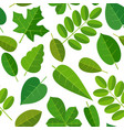 seamless pattern leafs flat color vector image