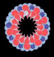 Beautiful graphic circular element vector image