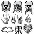 Halloween skull set vector image vector image