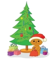 Teddy bear gifts and Christmas tree vector image vector image