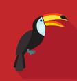 toucan cartoon flat icon brazil vector image