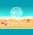say hello to summer text on sandy seashells shore vector image