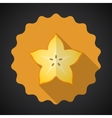 Star Fruit Flat Icon with long shadow vector image