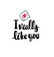 i really like you hand written typography poster vector image