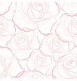 Pink outline roses on white seamless pattern vector image