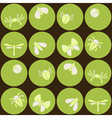 Seamless background with bugs and insects vector image
