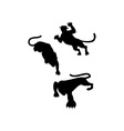 Wild Feline Silhouettes vector image