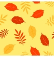 Autumn fallen leaves seamless pattern vector image