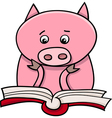learning piglet cartoon vector image
