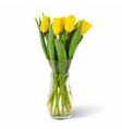 Glass vase with yellow tulips in water isolated vector image