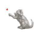 playing cat vector image