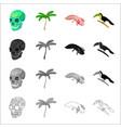 a human skull a palm tree ambystoma mexicanum a vector image