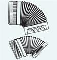 Music instruments Accordion vector image