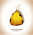 Bodhi leaf Natural vector image