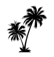 icon palm tree vector image