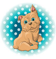 a cute dog french bulldog vector image