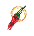 Hot Chili pepper with flames vector image