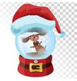 christmas glass magic ball with a dog a vector image