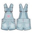 overall for a baby girl vector image