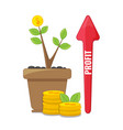 profit or financial growth concept vector image