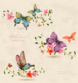 vintage a collection of butterflies on flowers vector image