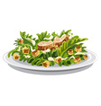 salad caesar with croutons vector image