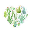 Watercolor cactus heart composition vector image