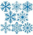 snowflakes a vector image vector image
