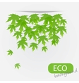 eco leves background vector image