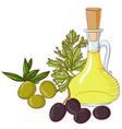 Olives and olive oil on white background vector image