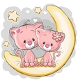 Two Cats on the moon vector image