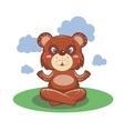 Character cute and beautiful bear practice of yoga vector image