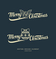 merry christmas modern hand drawn lettering vector image