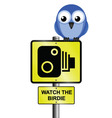 bird speed camera vector image vector image