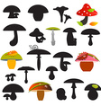 Mushrooms Set Isolated on White Background vector image vector image