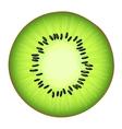 the juicy half the Kiwi vector image