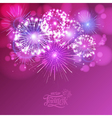 holiday fireworks vector image vector image