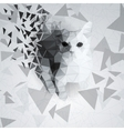 Cat of the polygons on the chaotic background vector image