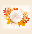 autumn sales banner with colorful leaves and vector image vector image